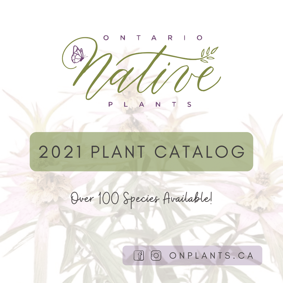 Online Retail Native Plants